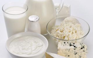Pré et probiotiques, des alliés pour notre santé ?